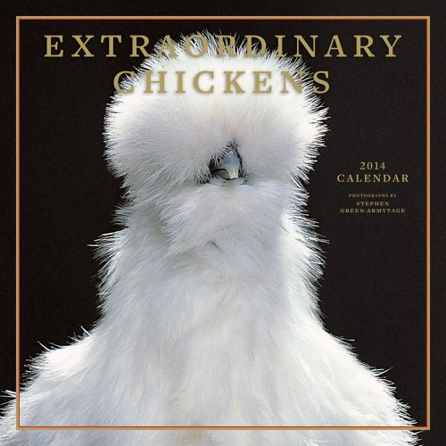 Extraordinary Chickens 2014 Calendar