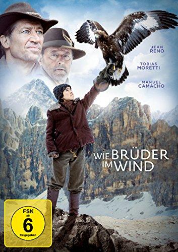 wie-bruder-im-wind