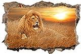 Löwe Safari Sonnenuntergang Wandtattoo Wandsticker Wandaufkleber D0856 Größe 100 cm x 150 cm