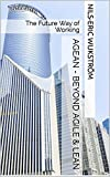 AGEAN - Beyond Agile & Lean: The Future Way of Working (English Edition)