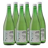 Osliper Grüner Veltliner Österreich Liter 2017 Weißwein trocken (6x 1 l)