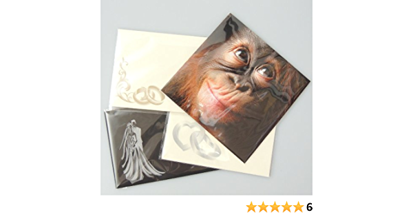 57x57 1000 C6 A6 162 X 119 Mm Clear Flat Poly Bags Cello Cellophane Bags Cello Cellophane Greeting Card Display Bags Sent In Hard Board Closure Envelope For Added Protection Pockets Free Delivery Bürobedarf Schreibwaren