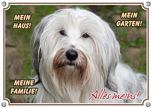 Petsigns Hundeschild - Tibet-Terrier - Premiumschild in Fotoqualität - wetterfest, DIN A4 -