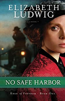 No Safe Harbor (Edge of Freedom Book #1) di [Ludwig, Elizabeth]