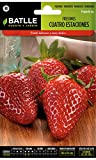 Batlle aromatic seeds - Strawberries 4 seasons (Seeds - 8cm)