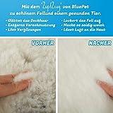 Bluepet *ZupfZeug* Fellbürste mit Click Clean Selbstreinigend |Sanfte Katzenbürste Zupfbürste | Kurzhaar bis Langhaar - 4