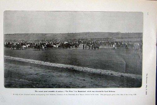 seigneur-1906-de-pitso-basutoland-selborne-horses-transvaal