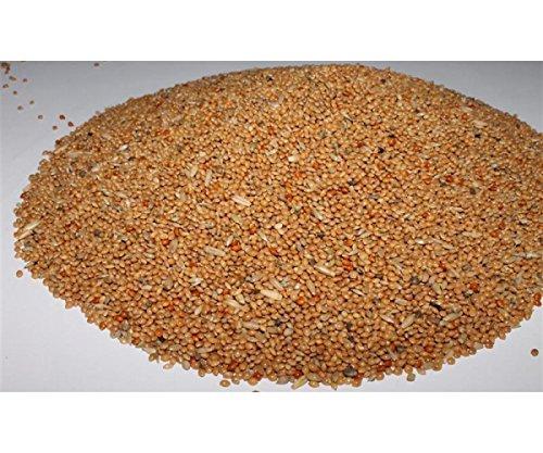 Wellensittichfutter mit Jod und Honig 1 kg Anhaltiner Premiumfutter