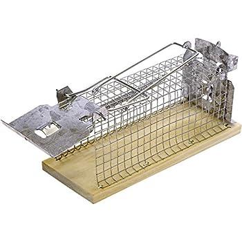Swissinno Solution Classique Cage souris Beige/Argent 6 x 15 x 7 cm