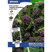 Portal Cool Johnsons Semillas - Vegetales Brócoli primeros brotes púrpura 500 semillas