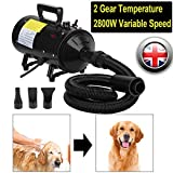 Best Dog Dryers - ZanGe Dog Hair Dryer 2800W Variable Speed Dog Review