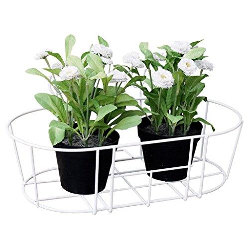 CJH Rampes ovales mural étagère à fleurs en fer balcon balcon plantes succulentes Hanging Flowerpot 2