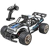 Distianert RC Auto elektronisch ferngesteuertes Auto funkferngesteuerter Geländewagen startbereit Buggy Monster Truck 1:16 2WD 2.4Ghz Hochgeschwindigkeit mit aufladbaren Batterien