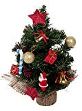 #5: 1 Feet Artificial Christmas tree with Assorted 14 Peice decoration