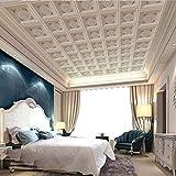 BIZHIGE Benutzerdefinierte Gips Papel Wandbild 3D Wand Decken Wandbilder Wallpaper Für Hall Hotel Decke 3D Foto Wandbilder Fresco 3D Wand Papier,400 X 300Cm (13.1X9.8 Ft) - Can Be Customized