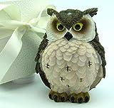 Deko-Eule, Eulen-Figur, Kunststein handbemalt sehr detailiert in Geschenk-Box, Geschenk-Set, Geschenkidee Sammlerstück, Geburtstagsgeschenk, Wohn-Deko (braun-beige)