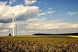 Artland Qualitätsbilder I Wandtattoo Wandsticker Wandaufkleber 60 x 40 cm Landschaften Felder Foto Gelb C3HS Windkraftanlage in Rapsfeldern