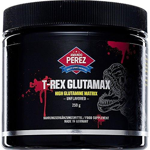 T-REX glutamax–Alto L-Glutamine Matrice–250g–6000G L-Glutamine–ormone della crescita Booster–Testosterone–azoto trasporto–L–Glutamine–Alte dosi di L-Glutamine per il rafforzamento muscolare Ultime