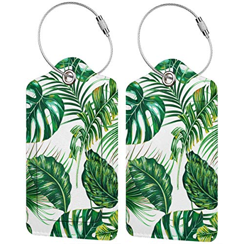 Tropical Palm Leaves Monstera Jungle Leaf The Arts Tropic Nature Luggage Tags Travel Tags Bussiness Card Holder with Name Id Card Privacy Covers Steel Loops