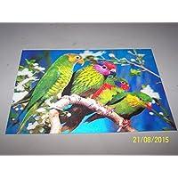 4pappagalli 3D foto, a 3D Lenticular pappagalli da parete, arte pronto da incorniciare, 34.5x 24.5cm - Parrot Wall Plaque