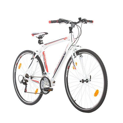 BIKE SPORT LIVE ACTIVE Trekkingfahrrad Cross Fahrrad Herren 28 Zoll Bikesport Route Aluminium Rahmen, Shimano 21 Gang (Weiß Matt, M-52 cm)