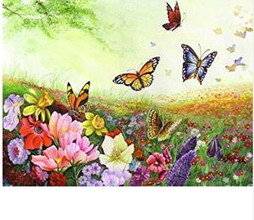 Bunte Blume und Schmetterling DIY Malen nach Zahlen Kits Farbe Malen nach Zahlen mit Holzrahmen für einzigartiges Geschenk 40x50cm