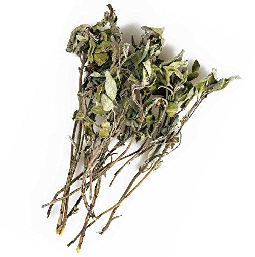 Preisvergleich Produktbild Original Italienischer Bio Salbei an Zweigen aus Sizilien Salbeizweige getrocknet 25g (ideal auch für Präsentkörbe)