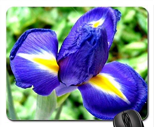 Navy Blue Iris Flower Mouse Pad, Mousepad (Flowers Mouse Pad)
