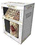 Harry Potter GP85145 Coffret cadeau Mug 315ml / 11oz, sous-verre, porte-clef, Multicolore