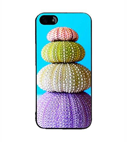 YuBingo Apple iPhone 5 2D Designer Phone Back Case Cover ( Colourful Shell )