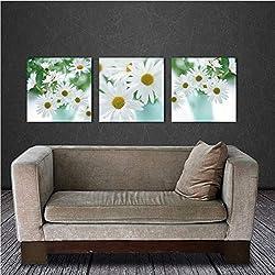 Djkaa Cuadro De La Pared Bodegón Floral Flor De La Margarita Africana Blanca Margarita De Gerbera 3 Piezas Pinturas ModernasIlustraciones Pintura