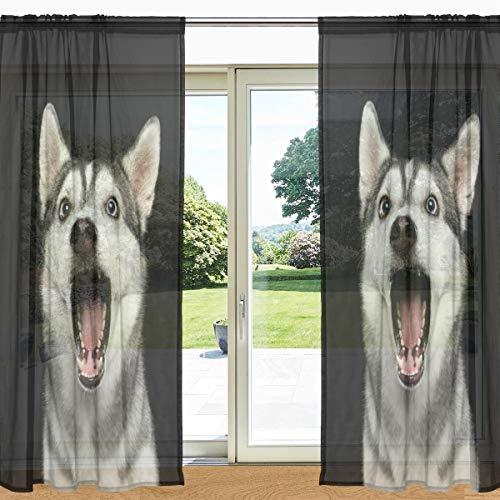 MyDaily Surprised Sibirian Husky Vorhang mit 2 Paneelen, 139,7 x 19,8 cm, Gardinenstange transparent, für Wohnzimmer, Schlafzimmer, Dekoration, Polyester, Multi, 55