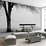 BZDHWWH Custom 3D Fototapete Wandbild Schwarz Weiß Big Tree Sitzbank Abstrakte Kunst Wandmalerei Modernes Wohnzimmer Sofa Tv-Kulisse Dekor
