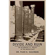 Divide and Ruin: An Alternate U.S. Middle East Policy (English Edition)