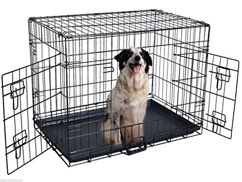 Fashion 42'' 2 Doors Wire Folding Pet Crate Dog Cat Cage Suitcase Kennel Playpen w/ Tray by Gomangos Good Furniture (Dog Cage Tray)