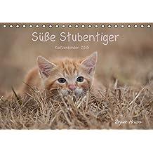 Süße Stubentiger - Katzenkinder (Tischkalender 2015 DIN A5 quer): Katzenkinder 2015 (Tischkalender, 14 Seiten)