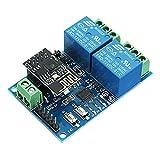 Ils - 12V ESP8266 Dual Wifi Relaismodul Internet der Dinge Smart Home Mobile App Fernschalter