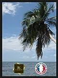 Inconnu RK Cadres-Cadre en Bois pour Poster - Épaisseur: 2cm - Couleur: Noir 40 x 60cm Noir