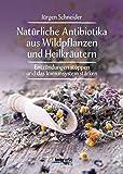 Natürliche Antibiotika aus Wildpflanzen und Heilkräutern: Entzündungen stoppen und das Immunsytsem stärken - Jürgen Schneider