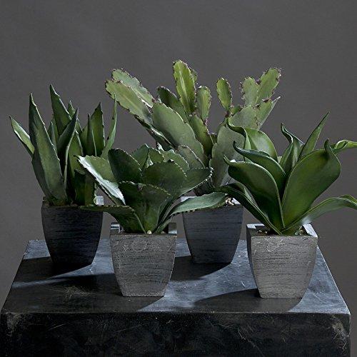 Agaven im weißen Topf 23 – 33 cm 4er Set Kunstpflanzen von DPI