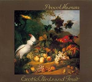 Exotic Birds & Fruits