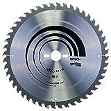 Bosch 2608640672 - Lama per sega circolare da tavolo, 300x30, 48 denti