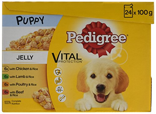 pedigree-dog-pouches-favourites-in-jelly-24-x-100-g-pack-of-2-total-48-pouches