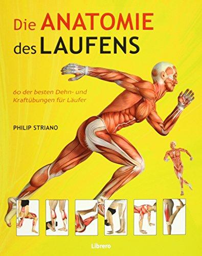 Die Anatomie des Laufens: Das Warming-up, Stretching und Cool-down par Philip Striano