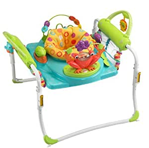 Nouveau-né, bébé, Fisher-Price First Steps Jumperoo Enfant, Nourrisson, Fillette, Petit garçon, D'enfant