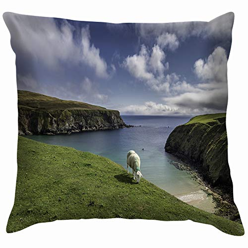 beautiful& One Sheep Beach Nature Parks Outdoor Cotton Throw Pillow Case Cushion Cover Home Office Decorative, Square 18X18 Inch