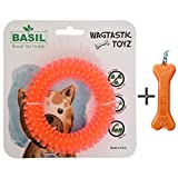#8: Goofy Tails- Basil Dental Spike Ring Chew Dog Toy (Color May Vary) With Key Chain