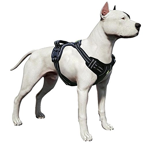 LovinPet Pitbull Harness Front Range Dog Harness No-Pull Adjustable Pet Vest 3M Reflective for Dogs Easy Control Walking Outdoor Training Sports Adventure