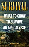 Survival: What To Grow To Survive An Apocalypse