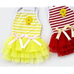 smalllee_lucky_store Pet Puppy Small Dog Cat Lace Skirt Princess Tutu Dress Striped Vest T-shirt Pleated Cat Puppy Cozy Dog Shirt Pet Dress smalllee_lucky_store Pet Puppy Small Dog Cat Lace Skirt Princess Tutu Dress Striped Vest T-shirt Pleated Cat Puppy Cozy Dog Shirt Pet Dress 51krNSEJFaL